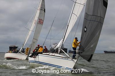 SCYA LBYC-0816