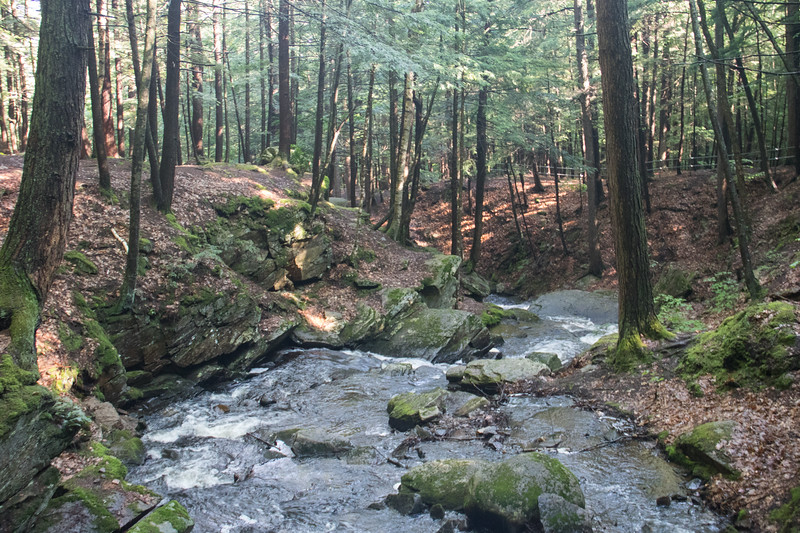 7-02-2017 Chesterfield Gorge NH 12