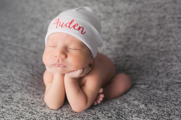 Auden Newborn Session