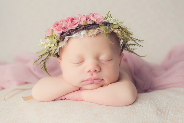 Charlotte Newborn Session