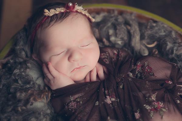 Cortez Newborn Sessions