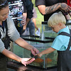 Roger Schneider | The Goshen News<br /> Jayden Lee Mast, 3, of Middlebury, touches a chestnut lamprey that Madelyn Boyer, an intern biologist with the city of Elkhart, is holding. The lamprey was captured in the Little Elkhart River along with 14 other species of fish as part of an educational program at the Middlebury Riverfest.