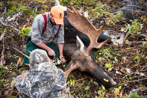 2017 Moose Hunt - Andy Pratt