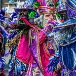 Red Purple Mummer Surrounded by Blue Purple Mummers