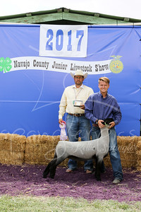 Reserve Jr Showman - Lamb - Dallon Laird