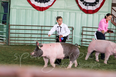 Grand Champion Market Swine - Lanna Westover