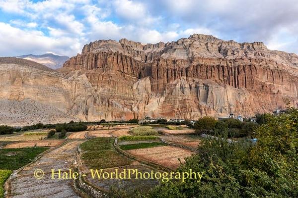 Autumn In Chhusang, Upper Mustang