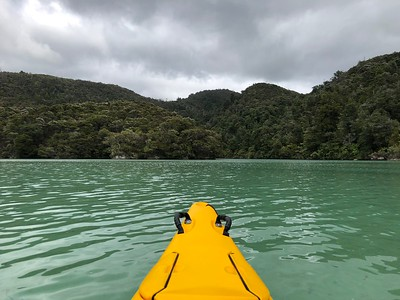 Frenchman's Bay (technically an estuary) in Abel Tasman