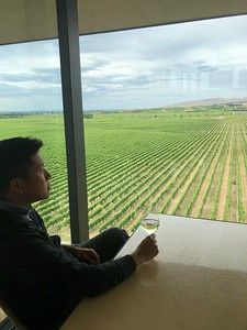 Overlooking the growing rows at Bancott