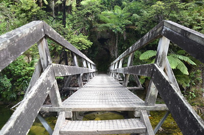 Foot bridge towards Cleopatria's Pool in Abel Tasman