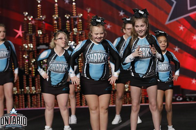 Cheer Sport Sand Sharks Special Needs