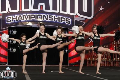 Limelight Cheerleading Fame Jr Group POM