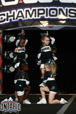 Cheer Spoort Pocket Sharks Tiny 1