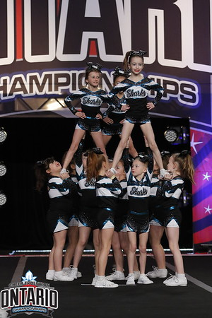 Cheer Sport Lemon Sharks Mini A1