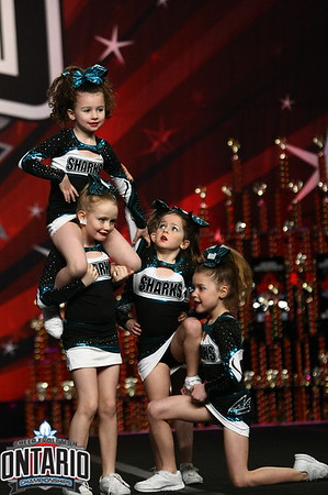 Cheer Sport Mako Sharks Mini AA1