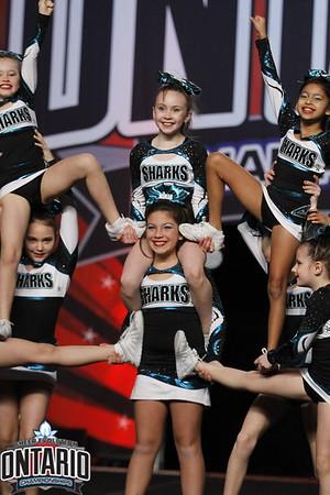 Cheer Sport Ninja Sharks Sm Youth A1 - R2