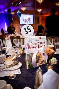 Photo by Tony Powell. 2017 Everybody Wins Gala. Capitol Hilton. March 21, 2017