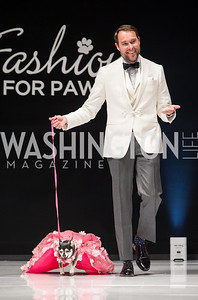 2017 Fashion for Paws
