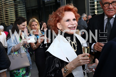 Judy Lynn Prince. Photo by Tony Powell. 2017 Free Expression Awards. Newseum. April 18, 2017