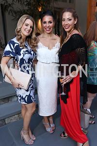 Sarah Walker, Lily Talakoub, Leah Kiarash. Photo by Tony Powell. McLean Project for the Arts. Bullock Residence. May 18, 2017