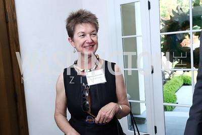 Dorothy Kosinski. Photo by Tony Powell. McLean Project for the Arts. Bullock Residence. May 18, 2017