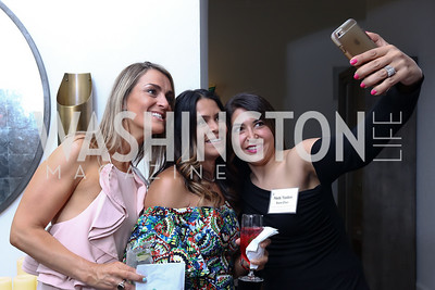 Jane Imperatore, Pat Bullock, Neda Nazdani. Photo by Tony Powell. McLean Project for the Arts. Bullock Residence. May 18, 2017