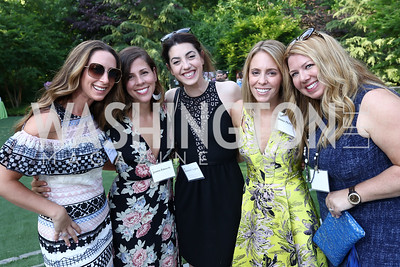Jen Graham, Jo Edwards, Elizabeth Sutphin, Jessica McMichael, Christina Cain. Photo by Tony Powell. McLean Project for the Arts. Bullock Residence. May 18, 2017