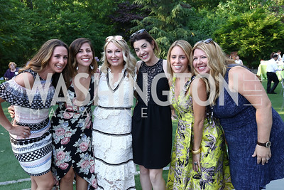 Jen Graham, Jo Edwards, Lindsey Keatley, Elizabeth Sutphin, Jessica McMichael, Christina Cain. Photo by Tony Powell. McLean Project for the Arts. Bullock Residence. May 18, 2017