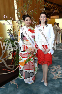 2017 Japan Cherry Blossom Queen Yuki Shimono, 2017 US Cherry Blossom Queen Rachel Bohn. Photo by Tony Powell. 2017 National Cherry Blossom Festival. Residence of Japan. April 4, 2017