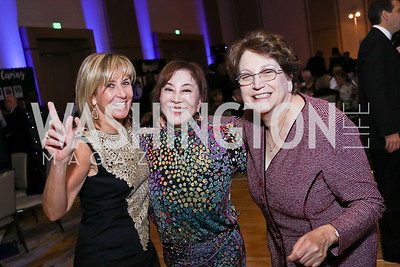 Denise Reilly, JH Lee, Alice Katz. Photo by Tony Powell. 2017 Capital Caring Gala. MGM National Harbor. November 11, 2017