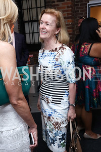 Ireland Amb. Anne Anderson. Photo by Tony Powell. 2017 WHCD Bytes & Bylines. DTR Modern Galleries. April 27, 2017