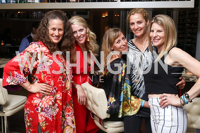 Julia Cohen, Jennifer Vinson, Ingrid Zimmer, Ami Aronson, Dorothy Stein. Photo by Tony Powell. 2017 WHCD United Talent Agency Event. Fiola Mare. April 28, 2017