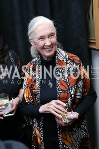 Dr. Jane Goodall. Photo by Tony Powell. 2017 World Affairs Global Education Gala. Ritz Carlton. March 29, 2017