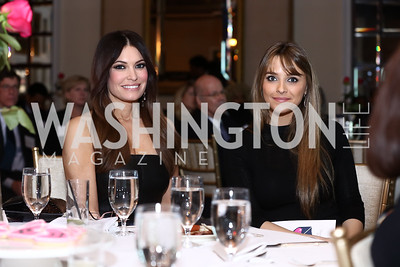 Fox News Channel Host and Best Friends Emcee Kimberly Guilfoyle, Kyle Nolan. Photo by Tony Powell. Best Friends 30th Anniversary. St. Regis. January 24, 2017