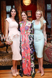 Amy Baier, Julie Kent, Louise Linton. Photo by Tony Powell. Lawrence Kudlow Book Party. Ross Residence. August 2, 2017