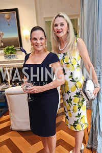 Grace Bender, Christine Rales. Photo by Tony Powell. Lawrence Kudlow Book Party. Ross Residence. August 2, 2017