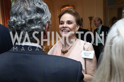 Amb. Diana Lady Dougan. Photo by Tony Powell. Mary Ourisman Diplomacy Museum Event. May 31, 2017
