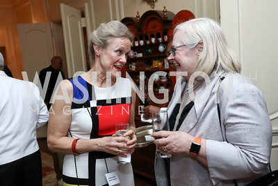 Amb. Robin Raphel, Amb. Laura Kennedy. Photo by Tony Powell. Mary Ourisman Diplomacy Museum Event. May 31, 2017