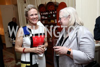 Amb. Robin Raphel, Amb. Laura Kennedy. Photo by Tony Powell. Mary Ourisman Diplomacy Museum Event. May 31, 2017