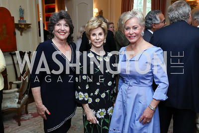 Carol Schwartz, Wilma Bernstein, Amb. Mary Ourisman. Photo by Tony Powell. Mary Ourisman Diplomacy Museum Event. May 31, 2017