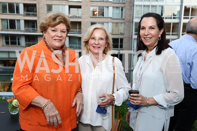Florence Meers, Daune McDevitt, Susan Hechinger. Photo by Tony Powell. Matt McCormick Launch Party. Squash On Fire. September 13, 2017
