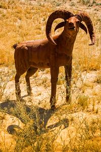 Bighorn sheep metal sculpture at Anza-Borrego State Park in California