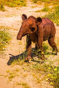 Baby tapir metal sculpture in AnzaBorrego State Park; California