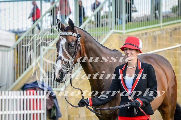 2017 Perth Royal Tuesday 26-9