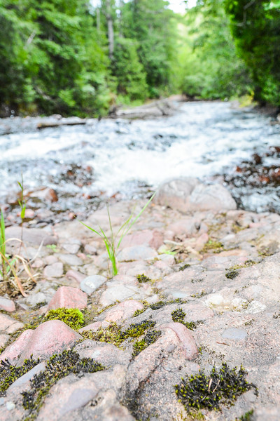 Rocks along the River by by Claire Haapala