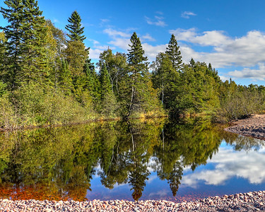 Honorary Category Runner-Up #1 - Reflection of the Northwoods in Gratiot River by Bob Vogt. Taken at Gratiot River County Park.