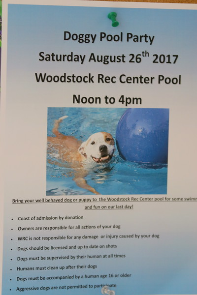 Woodstock Rec Dog Pool Party