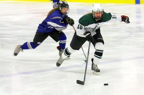 WUHS Girls Hockey vs U32