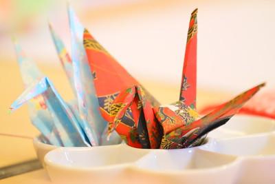 IMG_5307 crane