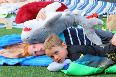 IMG_6122 sam paradis,4, of chester and theo shyne,6, of springfield watch movie